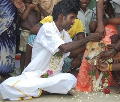 هند: ازدواج دختر هندی با یك سگ ولگرد