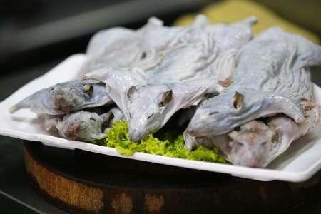 خوراک موش، قبل از پخت
