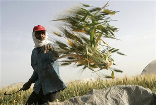 باستان جشن جشن ایران های دیگان از
