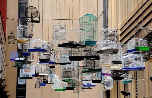 عکس هایی از دیدنی های امروز هفدهم مهر ماه ۱۳۸۸ Tafrihi.Com