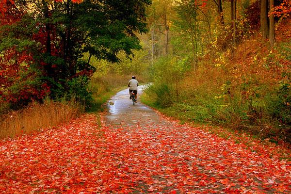 عکس های فوق العاده زیبا از پاییز هزار رنگ کانادا