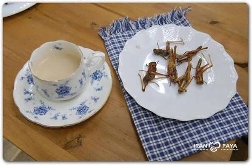چندش آورترین غذاهای شرق آسیا (تصویری) www.TAFRIHI.com