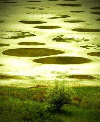 دریاچه خالدار! (تصویری)  - TAKMAHFEL.COM