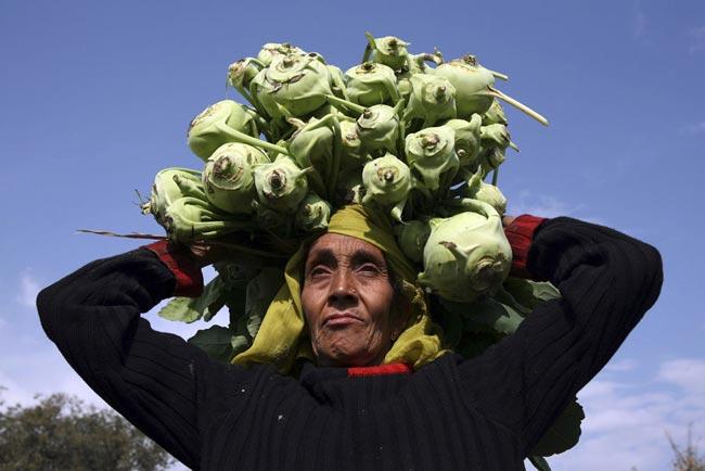 زن کشاورز هندی