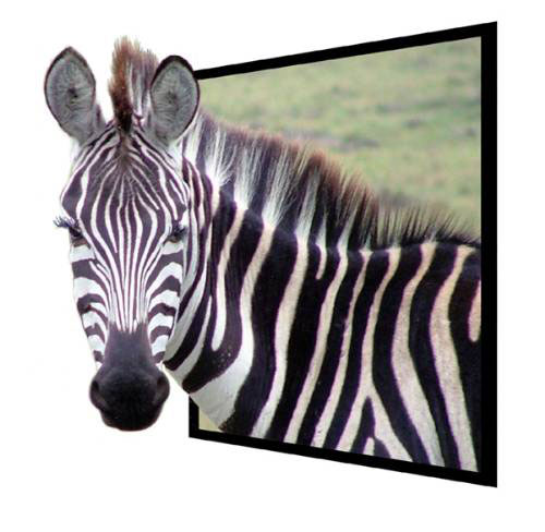 تصاویر سه بعدی شگفت انگیز! www.TAFRIHI.com