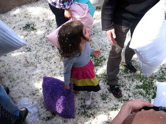دیدنی های روز 19 خرداد