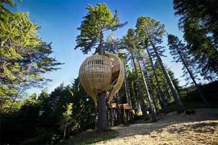 خانه های درختی زیبا و دیدنی (تصویری) www.TAFRIHI.com