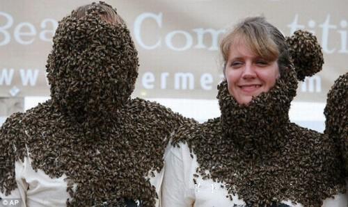رقابت برای جمع کردن زنبور روی بدن خود