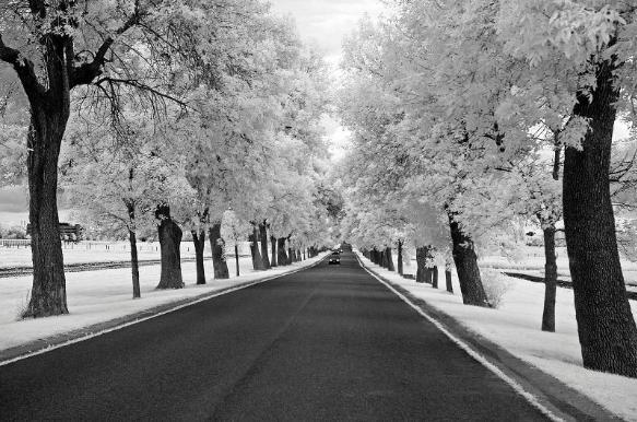 عکس جاده ی تنهایی