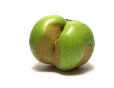 عکس+عجیب+میوه
