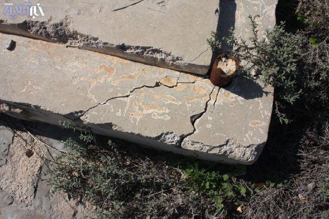 عکس خروس روی سنگ