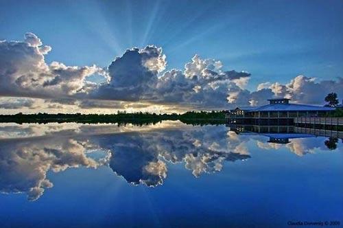 تصاویری زیبا از بازتاب آب