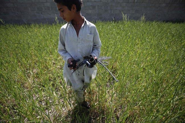 نوجوان پاكستانی