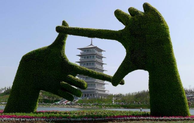 نمایشگاه گل در چین