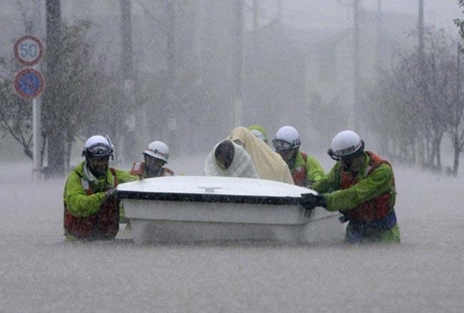 نجات جان سيلزدگان در ژاپن