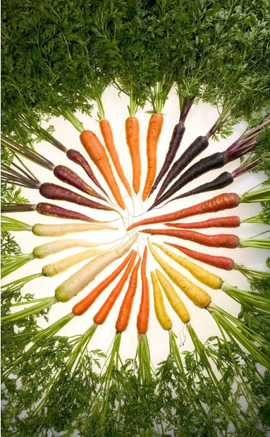 هویج های رنگی