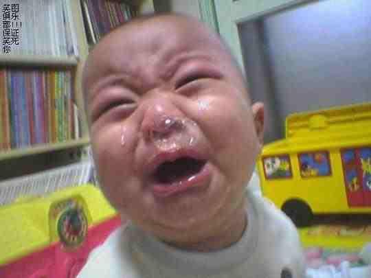 بچه گریه