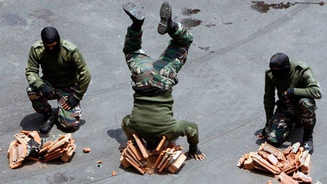 ارتش مالزی