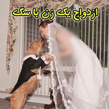 ازدواج یك زن با سگش!