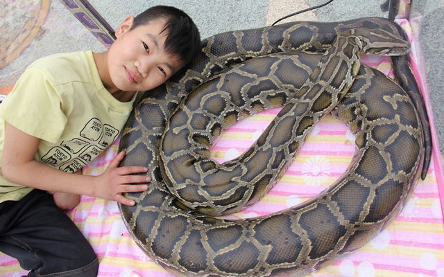 پسر 11 ساله چینی