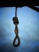 ۴ حکم اعدام در پرونده فساد ۳ هزار میلیاردی / حبس ابد برای رئیس شعبه کیش بانک ملی