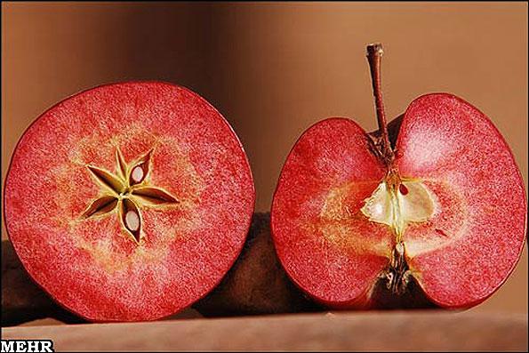 سیب های تو سرخ