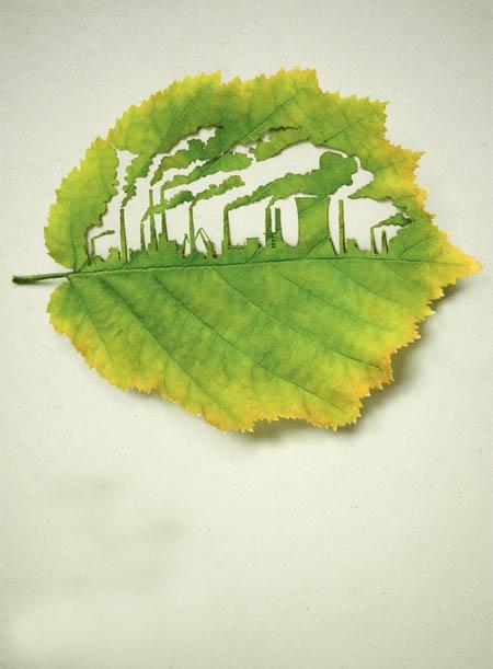 هنرنمایی با برگ ها
