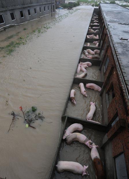 سیل در چین