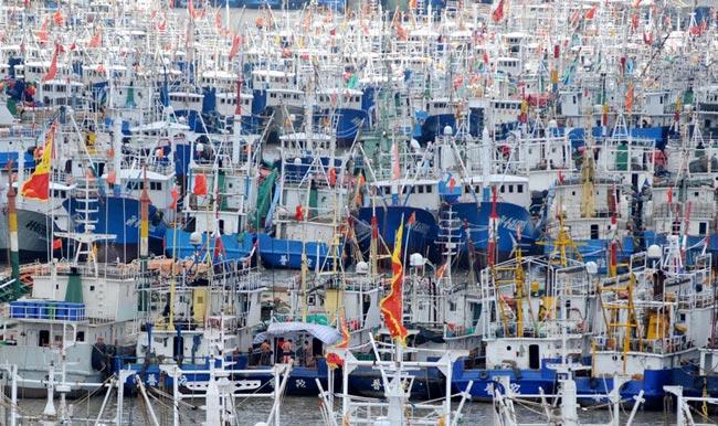 قایق های ماهیگیری