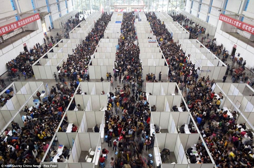 252395 725 نمایشگاهی برای استخدام این همه چینی! /عکس