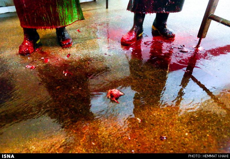 عکس+کشتارگاه+تهران