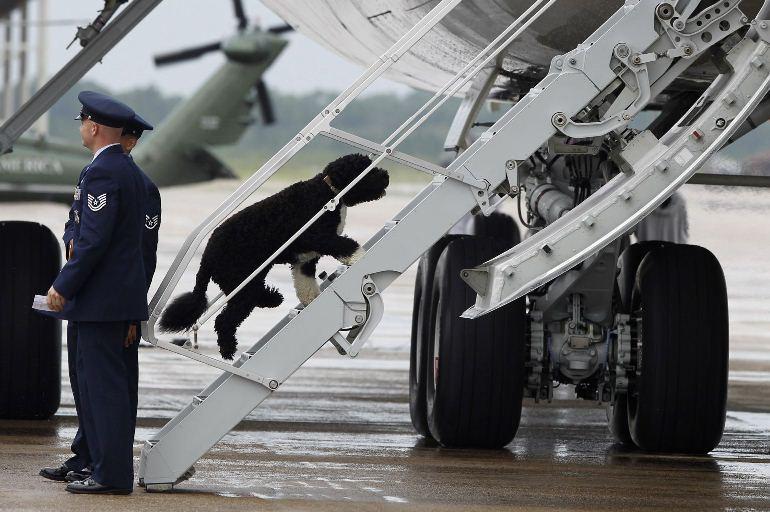 هواپیمای شماره یک اوباما
