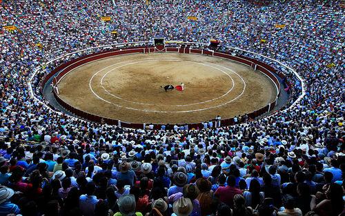 نمایش یگ گاو باز اسپانیایی در جشنواره ای در کلمبیا