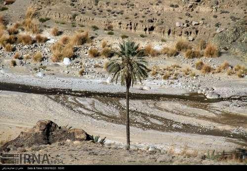 resized 424389 917 گزارش تصویری/ قشم بزرگترین جزیره ایران