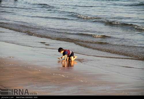 resized 424396 609 گزارش تصویری/ قشم بزرگترین جزیره ایران