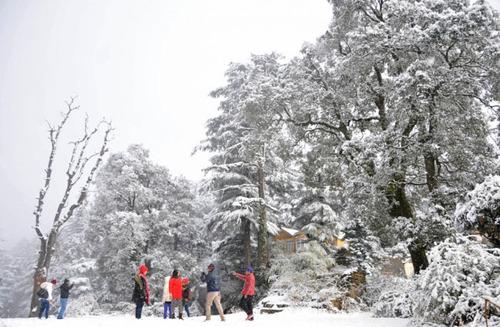 بارش برف در هیماچال پرادش هند