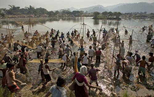 ماهیگیری از یک دریاچه در جریان جشنواره ای آیینی در هند