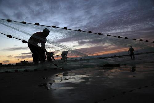 ماهیگیری در ساحل غزه