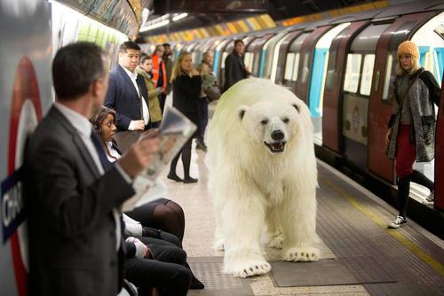 قدم زدن یک ربات خرس قطبی در مترو لندن