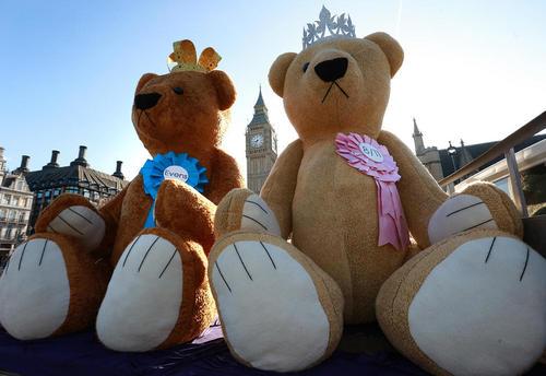 گذاشتن دو عروسک 3 متری خرس تدی در وست مینستر لندن به مناسبت در راه بودن دومین فرزند  نوه ملکه بریتانیا