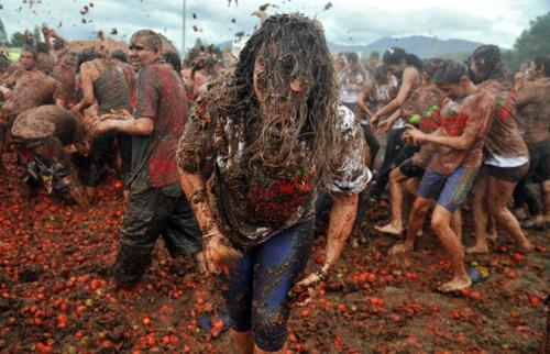 جشنواره جنگ گوجه فرنگی در کلمبیا