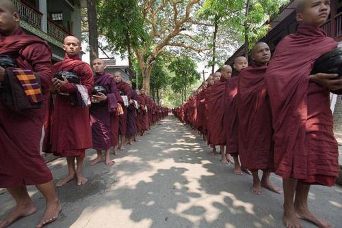 راهبان بودایی در شهر یانگون میانمار