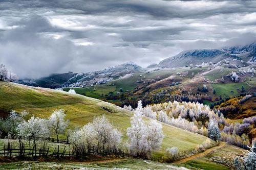 رومانی- ادوارد گوتسجو