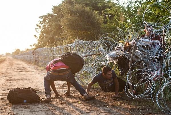 عبور مهاجران آسیایی از مرز بین مجارستان و صربستان