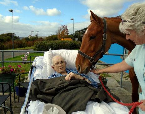 بیمار رو به مرگ در بیمارستانی در انگلیس اجازه یافت پیش از مرگ اسب مورد علاقه اش را برای آخرین بار ببیند