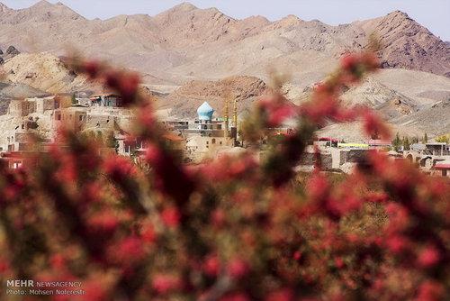 اخبار خراسان جنوبی