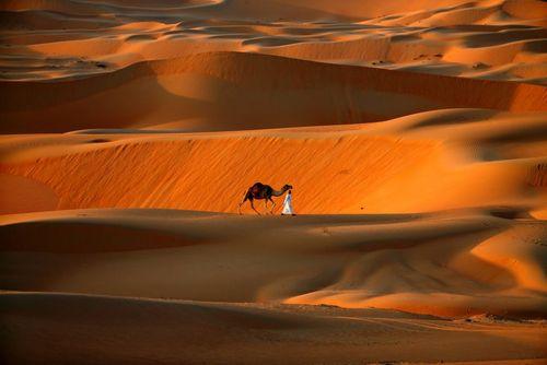 صحرایی در جنوب غرب شهر ابوظبی امارات