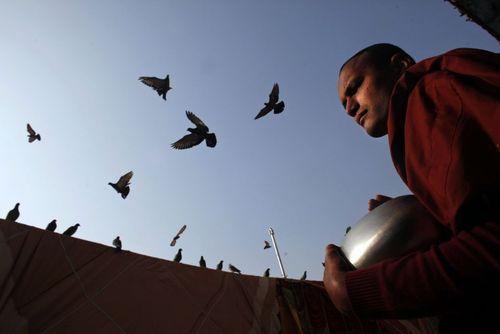 یک راهب بودایی در کاتماندو نپال