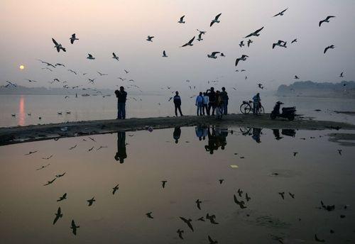 محل تلاقی رودهای گنگ و یامونا در هند