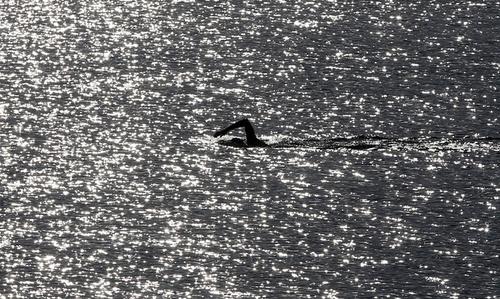 شنا در ساحل شهر نیس در جنوب فرانسه